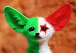 الجمهورية الجزائرية الديمقراطية الشعبية Images?q=tbn:ANd9GcRcvp8mcRRnSvTzjab2seOMpkfAut4A75IdQNFqufyTlyhaA3NP