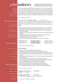 Management CV template  managers jobs  director  project management  CV example