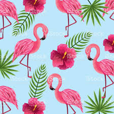 Flowers Plants by Beauty And Cute Flowers Plants With Flamingo Background Stock