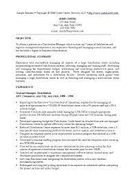 Resume Writer Nyc  executive resume writing  executive resume