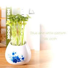 Best Office Desk Plants Desk Plant Air Purifier Best Home Furniture Decoration