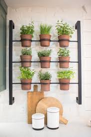 Garden Kitchen Ideas Best 25 Kitchen Herbs Ideas On Pinterest Indoor Herbs Herb