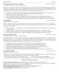 entry level business analyst resume examples senior financial analyst resume summary sample resume of finance professional good resources research paper resume federal government government budget analyst job