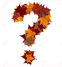 Maple Tree Symbolism by Question Mark Symbol Made With Autumn Leaves Isolated On White
