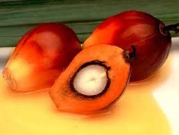 Kleines Palmöl Flashback