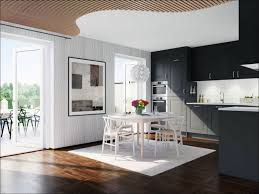 Discount Kitchen Cabinets Michigan Affordable Kitchen Cabinet Doors Gallery Glass Door Interior