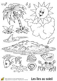 coloriage ile palmiers poissons et coquillages sur hugolescargot com
