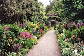 305 best beautiful gardens and plant combinations images on