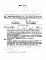 Examples Of Summaries On Resumes by Software Sales Executive Resume Example Sales Executive Resume