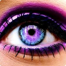 Color Or Colour by Rainbow Contact Lenses Cat And Rainbow Contact Lenses Then