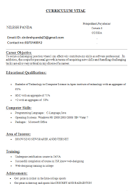 It Computer Tech Resume  pc technician resume sample resume     Waiter Resume samples