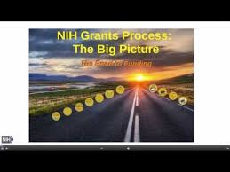 BOD Elections National Library of Medicine   NIH www yoga vidya de
