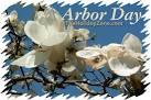 Celebrating Arbor Day at The