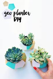 Office Desk Plants by 20 Cubicle Decor Ideas To Make Your Office Style Work As Hard As