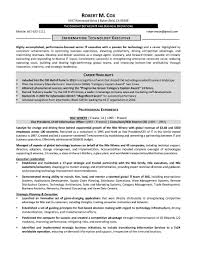 It Example Resume by Senior Advertising Manager Sample Resume Uxhandy Com