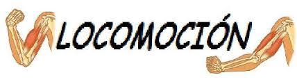 Locomocion TV