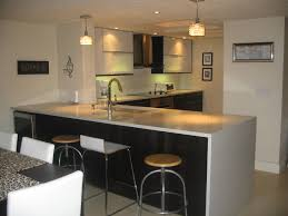 Ikea Furniture Kitchen by Ikea Kitchen Remodel Best Kitchen Decoration