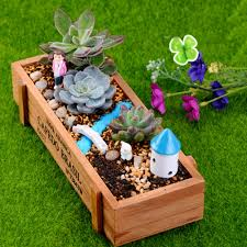 Succulents Pots For Sale by Compare Prices On Wood Succulents Pots Online Shopping Buy Low