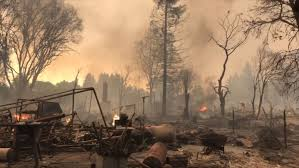 Willow Wildfire California by Wildfire