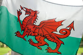 Christian group wants      evil      Welsh flag changed   Wales Online The Welsh Flag
