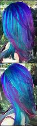 Coloring Ideas by Best 25 Wild Hair Colors Ideas On Pinterest Crazy Hair Coloring