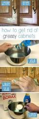 best 25 kitchen cabinet makeovers ideas on pinterest kitchen