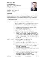 professional resume software engineering cv template software       sample software engineer resume VisualCV