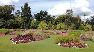 Brisbane City Botanic Gardens by Anja Ordning Ordninga Twitter