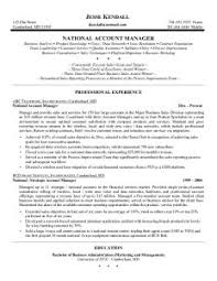 Great Sales Manager Resume Examples