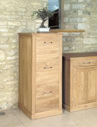 2 Drawer Oak Wood File Cabinet by Baumhaus Mobel Oak 3 Drawer Filing Cabinet Amazon Co Uk Office