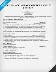 Car Sales Consultant Job Description Resume by Insurance Appraiser Sample Resume Energy Broker Sample Resume