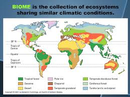 Latitude Map Map Of Biome Locations In The World Temperate Deciduous Forest