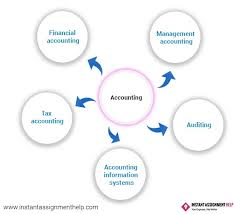 Accounting Dissertation Instant Assignment Help