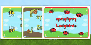 editable class group table signs minibeasts minibeasts