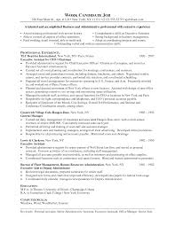 skills resume for it  computer skills resume sample computer       computer skills
