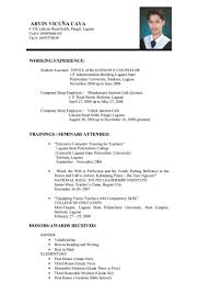 Engineering Resume Format  resume template electrical engineering     Net Developer Resume  software developer resume sample   ersum net