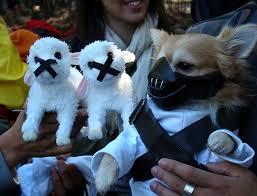 Hannibal Halloween Costume Hannibal Lecter Dog Halloween Costume Halloween