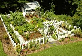 nice home vegetable garden design h25 for home interior ideas with