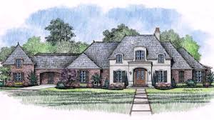 homes french country style home style