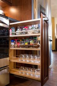Best Spice Racks For Kitchen Cabinets Kitchen Cabinets Spice Rack Pull Out Home And Interior