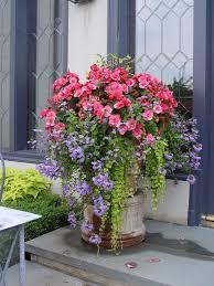 212 best designer container gardens images on pinterest pots
