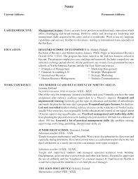 Example Resume  Professional Experience And Education For Best Marketing Resume Samples With Sales And Operations Home Design Resume CV Cover Leter