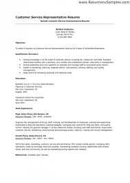 Summary Sample Resume by Professional Summary Example Template Design