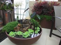best 25 container water gardens ideas on pinterest diy