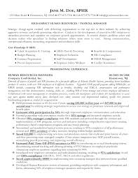 resume achievements examples hr manager resume summary hr manager resume samples hr manager hr executive sample resume sponsorship proposal template for events