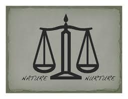 Nature vs nurture essays