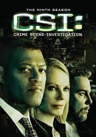 Download - CSI : Las Vegas 10ª Temporada DVDRMZ AVI Dublado