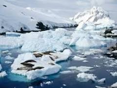 Regiões Polares - As características dos polos Sul e Norte do planeta