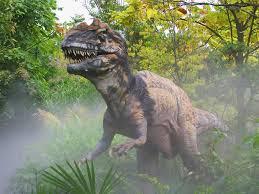 Fósiles que nos muestran cómo se fue-ron dando los procesos de cambio en diferentes etapas de la historia geológica de la Tierra. Indirectas. Nos demuestran el parentesco entre especies y nos permiten ir delineando los árboles evolutivos de los organismos.  Evidencias directas: los fósiles Las primeras señales que surgieron como indi-cadores de cambio en los seres vivos fueron los fósiles, que son restos de organismos que vivie-ron en el pasado y que se han conservado hasta nuestros días. Los fósiles nos pueden contar una historia acerca de nuestro pasado y el de otros organismos. Se han encontrado, por ejemplo, los hueso