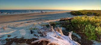galveston island state park u2014 texas parks u0026 wildlife department